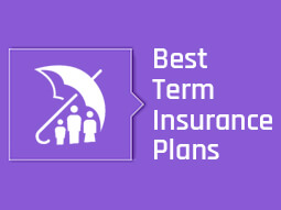 term insurance cover