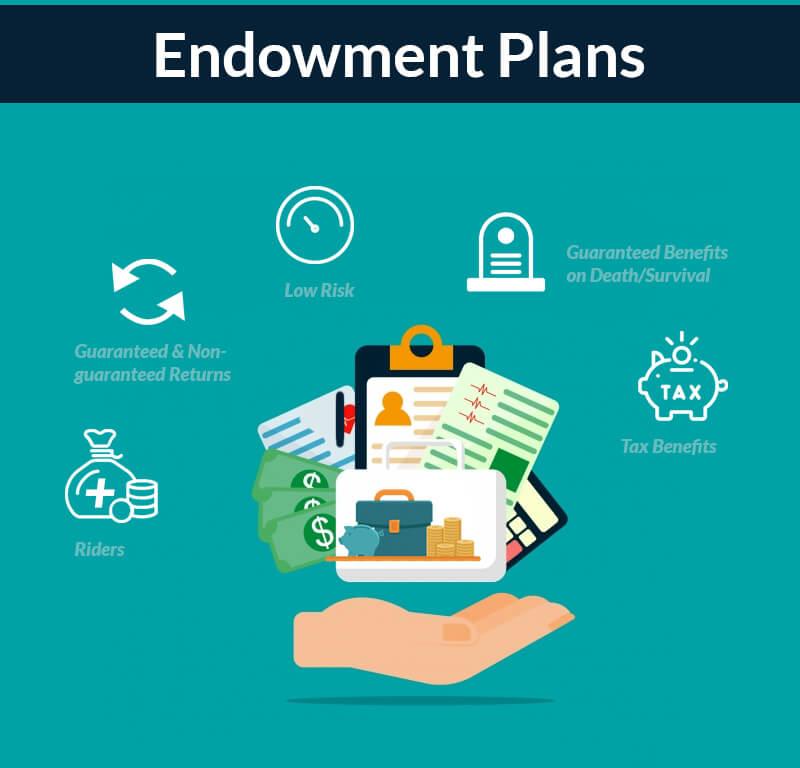 endowment plan features
