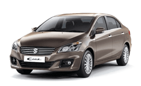 celerio Car Insurance