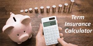 Term insurance premium calculator